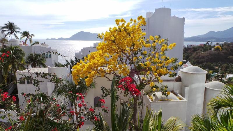 Beautiful Home in the Las Hadas Peninsula