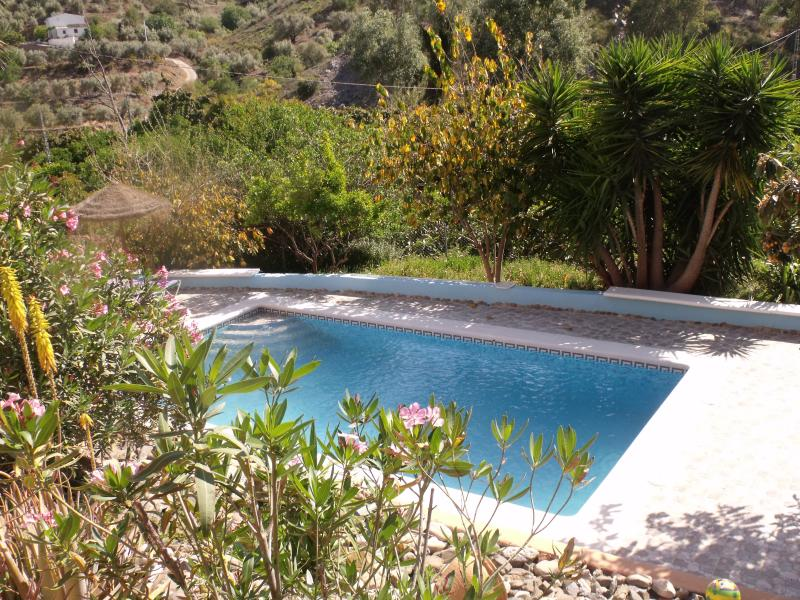 Looking down to the Stunning 8 x 4 Pool