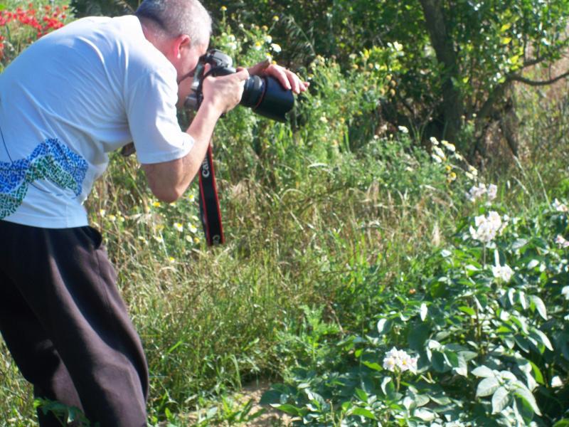 Flores, plantas e outros para apreciar e fotografar.
