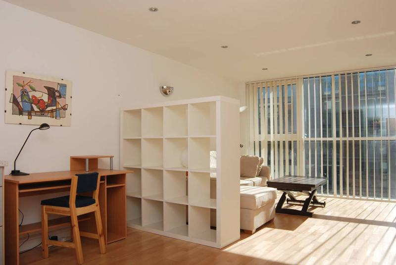Very spacious, sunny and modern reception room with partial Dock View