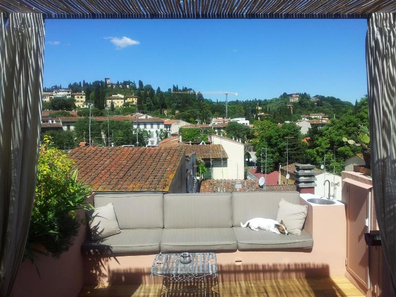 The view of Bellosguardo Hill from the terrace, with our dog Tess in her favorite spot !!