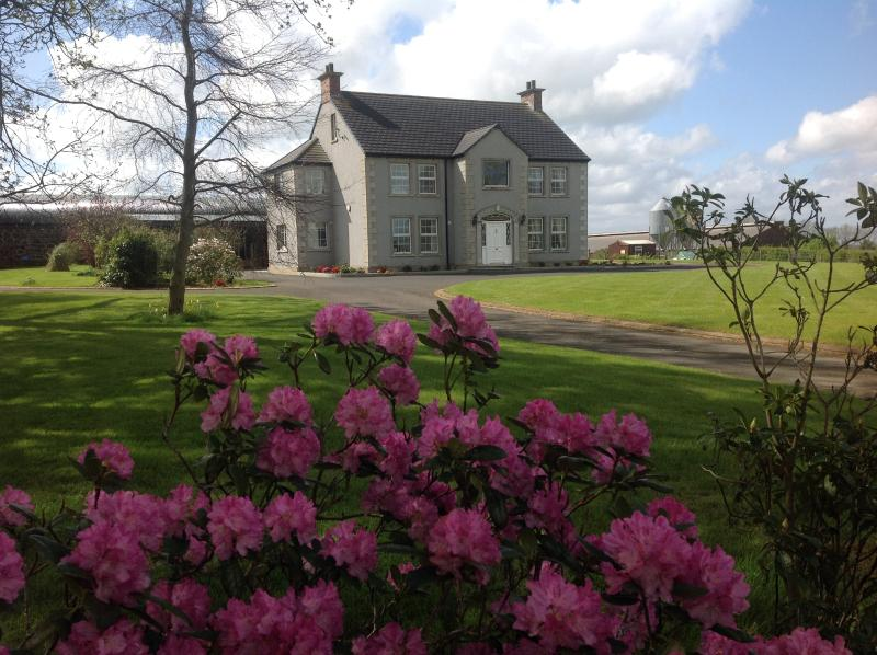 Ballyharvey House B&B Room 4 (with Airport Car Parking option), vacation rental in Aghalee