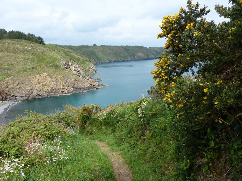 Falaises de Plouha, plus hautes falaises de Bretagne
