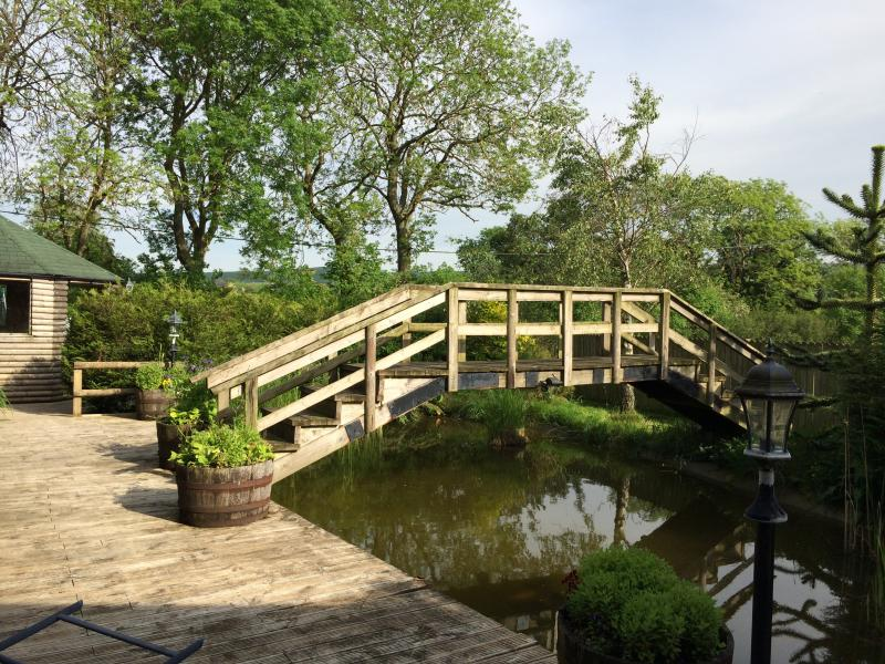 The decking and bridge surrounding the pond in the garden