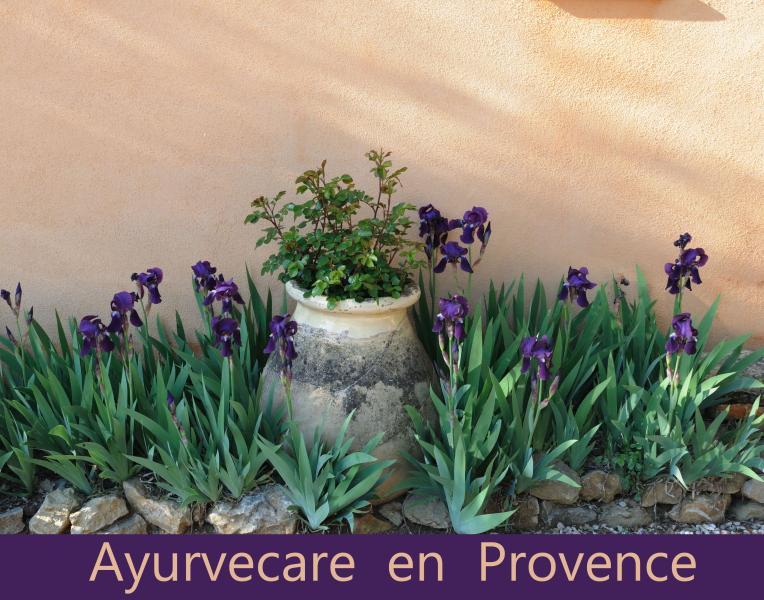 Ayurvecare en Provence
