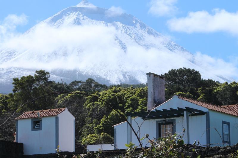 Casa do Paim - great views, location de vacances à Velas