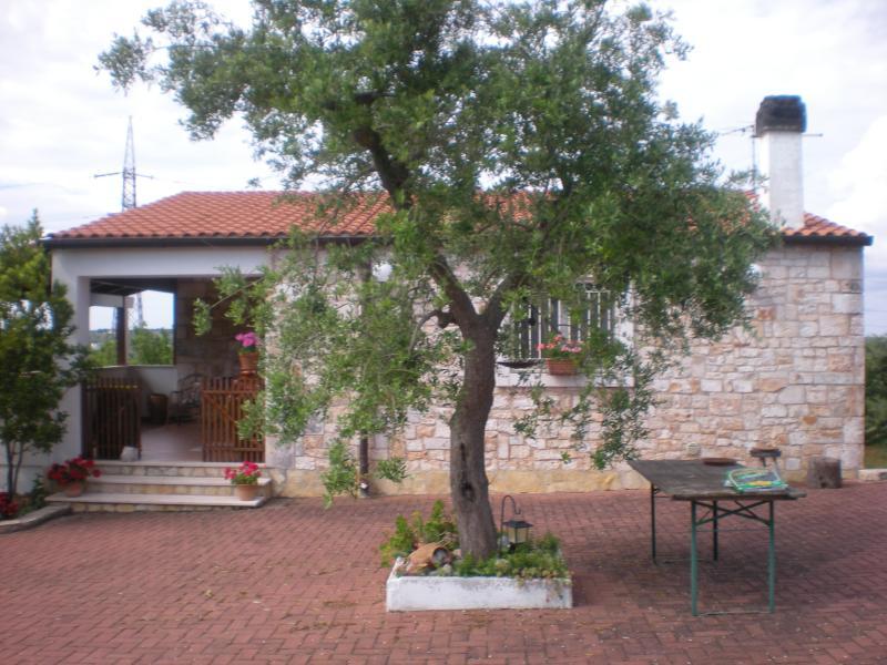 Bed & Breakfast / Casa vacanze  Villa Gina, vacation rental in Castellana Grotte