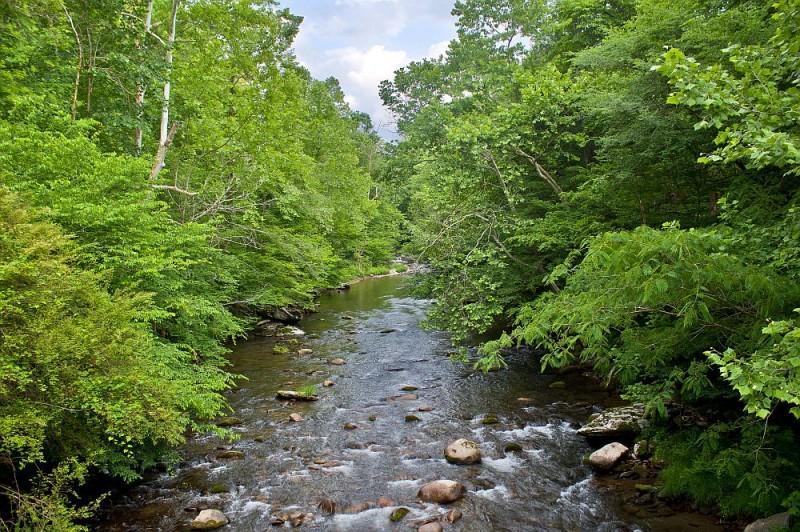 River vicino alla cabina