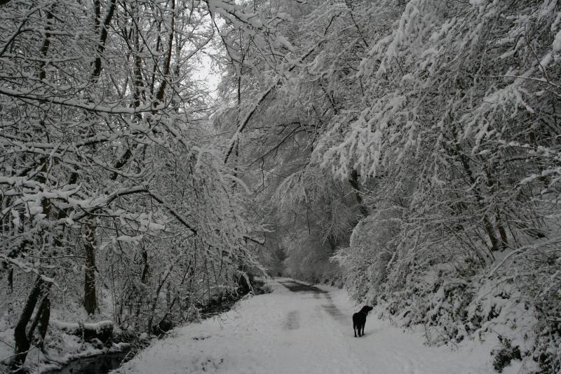 Un paraíso invernal :)
