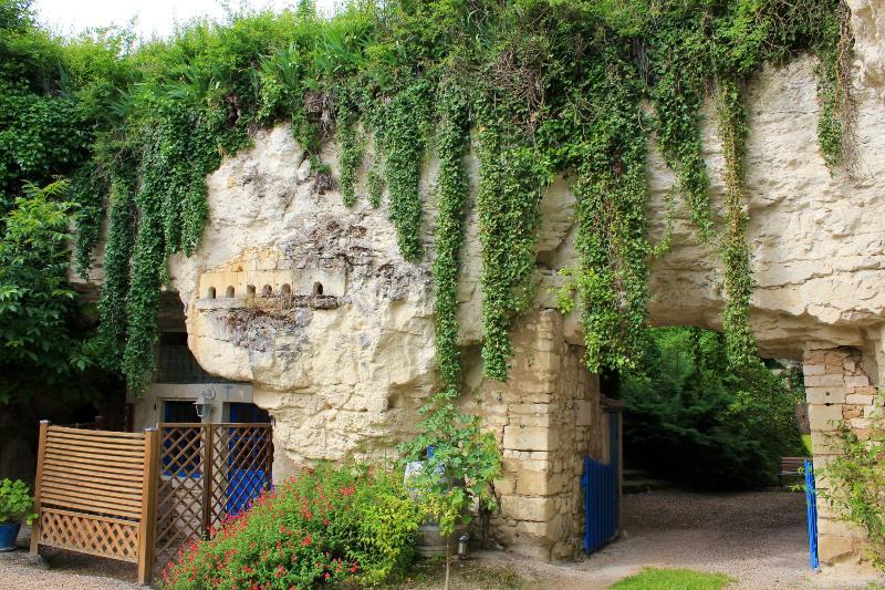Gite troglodyte Loire Valley, vacation rental in Berrie