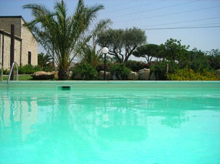 Swimming pool and Farm