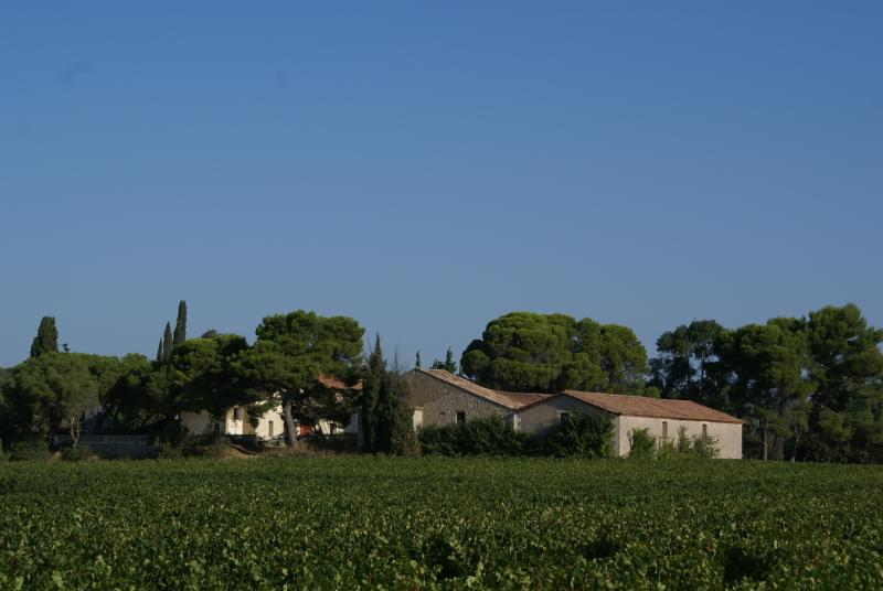 Gite  domaine pain de sucre, vacation rental in Capestang