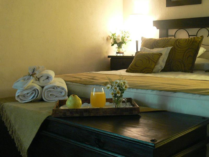 La Estacada Polo&Lodge, vacation rental in Province of Mendoza