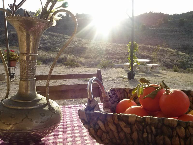 la lagartija rural house, vacation rental in Lorca