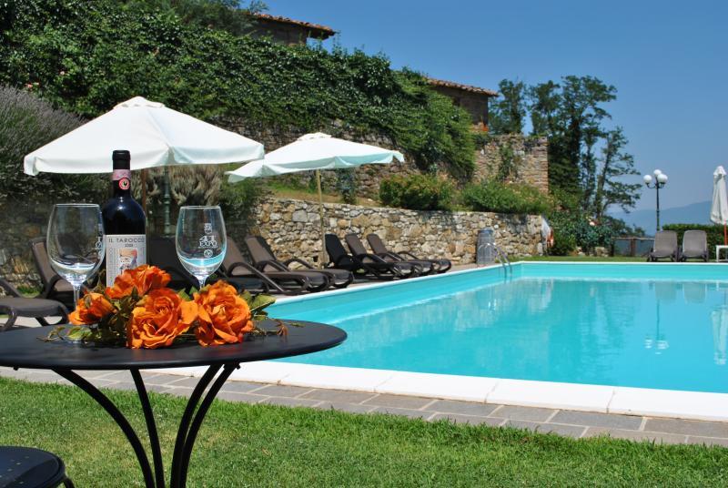 Villa il Castellaccio in Greve in Chianti - flat 4, holiday rental in Volpaia