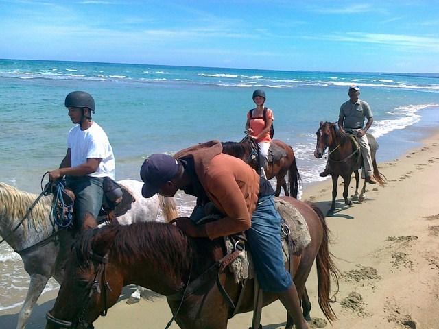 Excursions équestres en montagne ou à la plage...