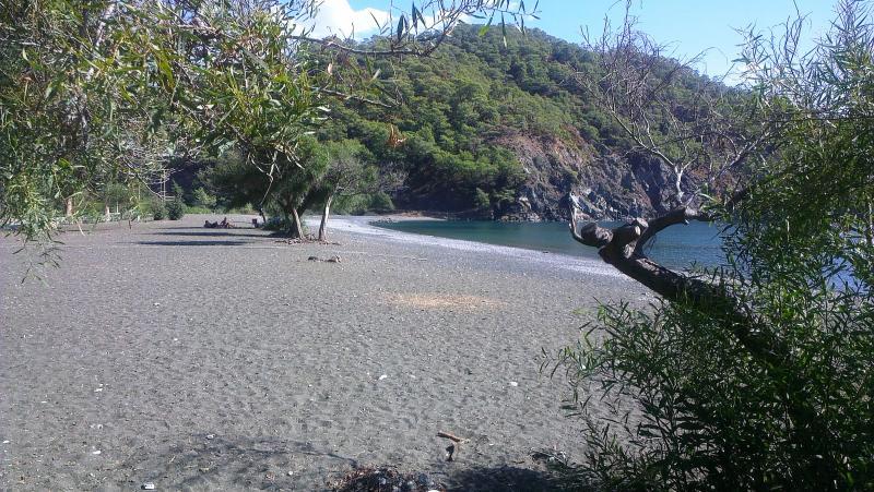 Local playa