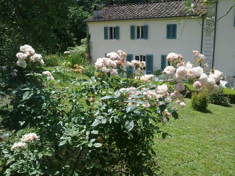 Le ortensie, holiday rental in Guamo