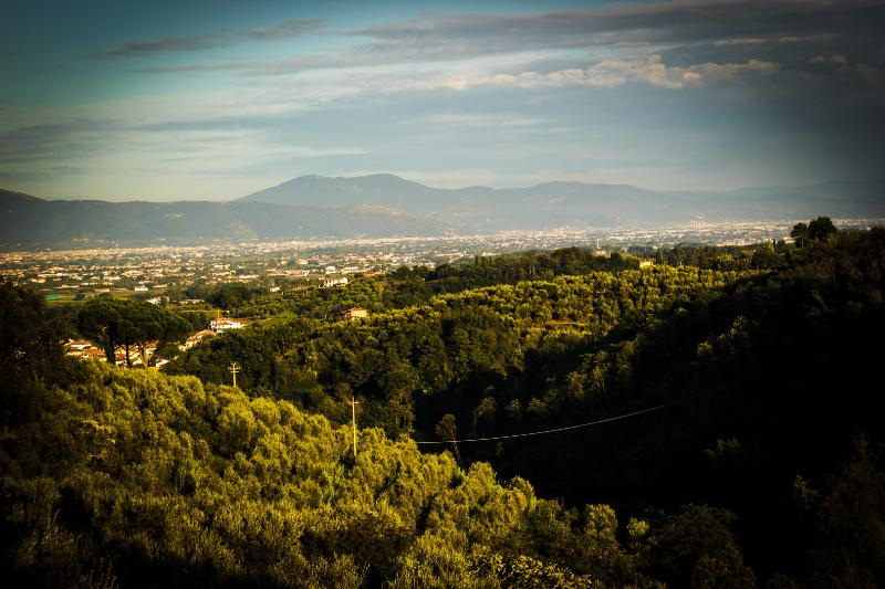Take a walk around our endless olive valley