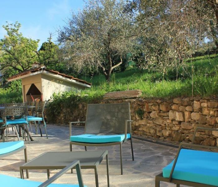 Terrasse et jardin avec oliviers