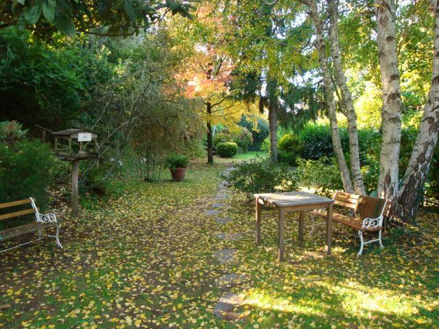 Vista giardino in autunno