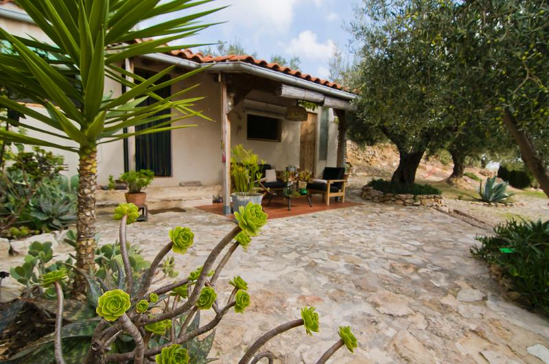 Terrace and porch with the olive trees