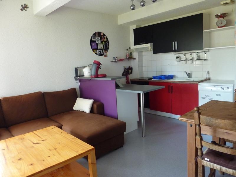 Salon et cuisine équipée. (living room and kitchen)