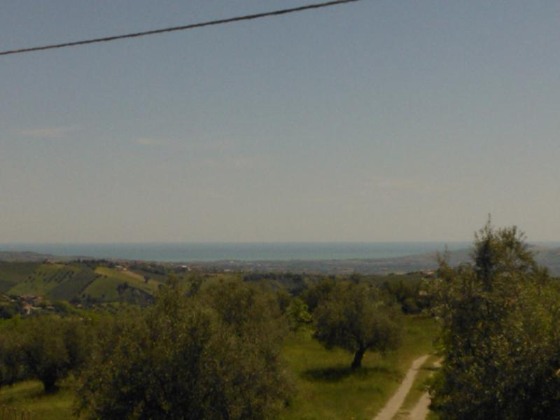 A view from the house