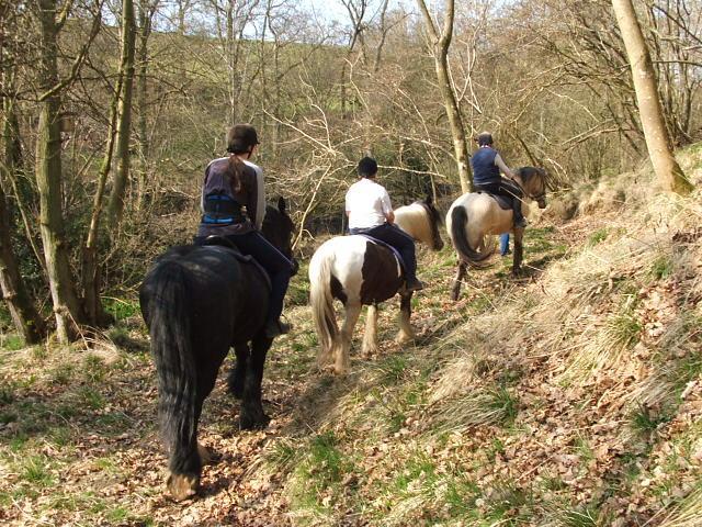 pony trekking