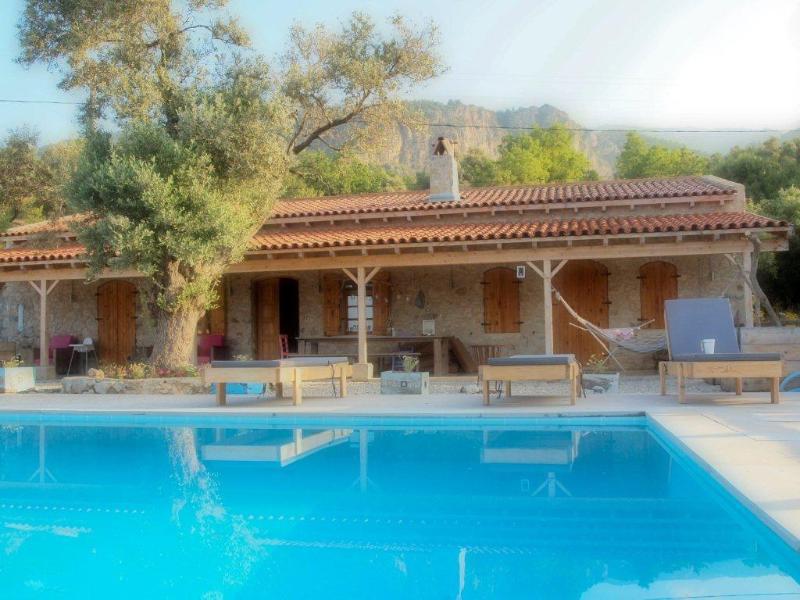 Villaolivio and the pool