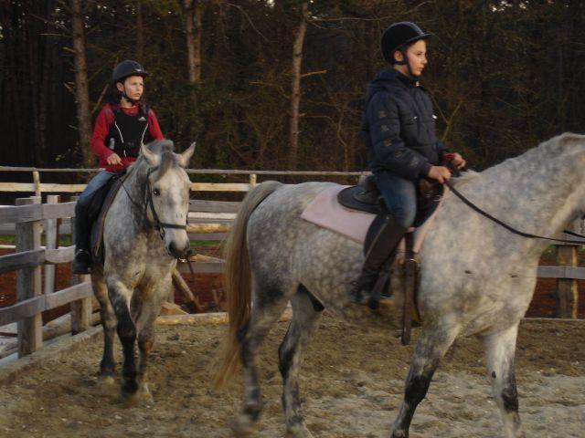 horse club 'SOKO' Pazin