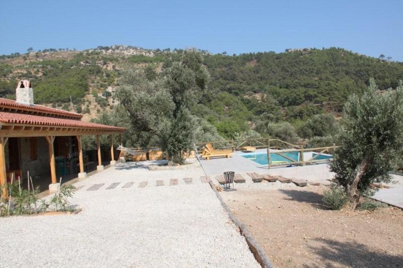 Villaolivio and pool