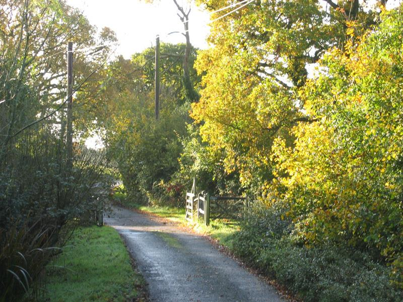 Stroll up the lane and pick any number of footpaths to try