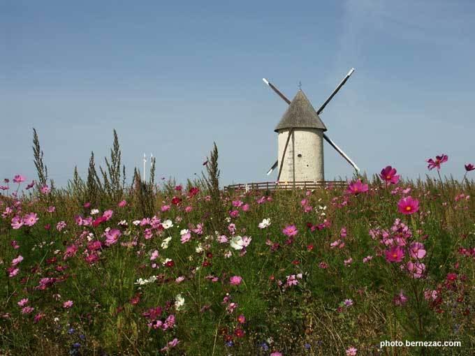 Die Mühlen der Charente