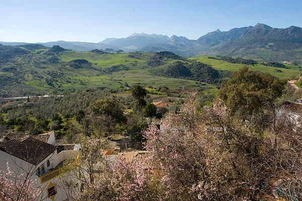 Another view from the terrace, this in winter with almonds in blossom