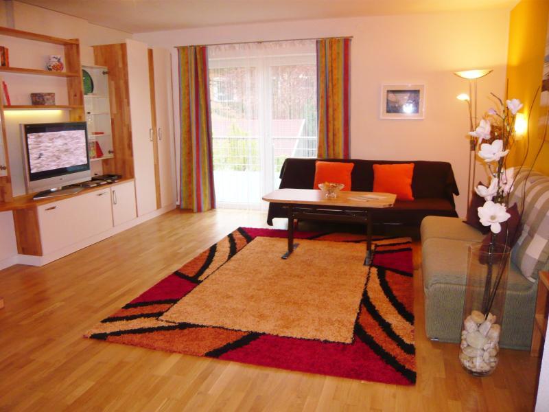Wohnzimmer mit ausziehbaren Diwanbett