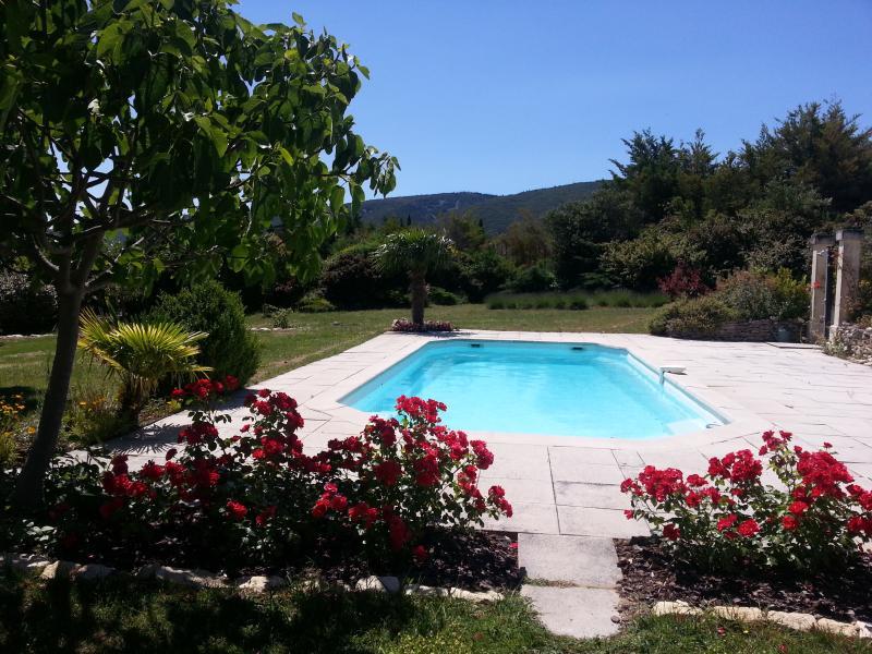 La piscine de 11x4.50