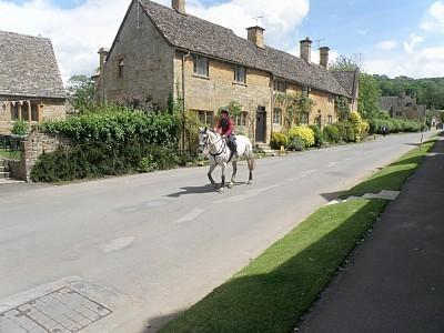 Shepherd's Hay, Stanton