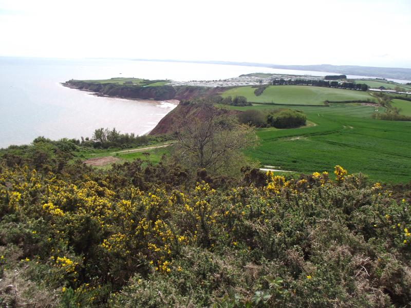 coastal path with views towards Exmouth from Budleigh Salterton