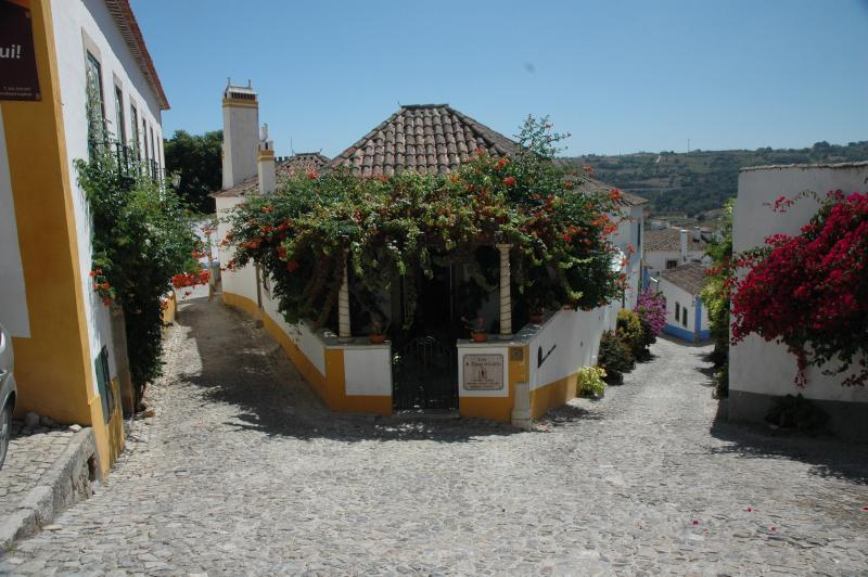 Beautiful flowers and cobbled streets in old Obidos