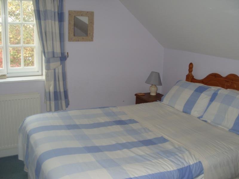 A double and single bed are in the comfy blue room