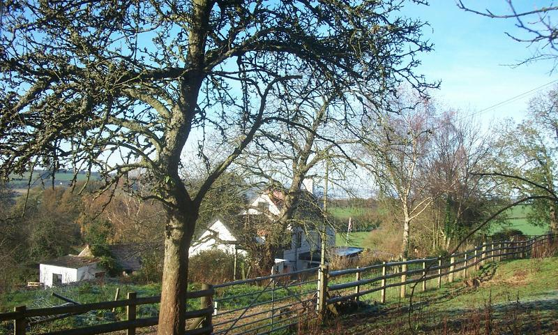 This secluded property is at the end of a forestry track and provides peace and tranquility.