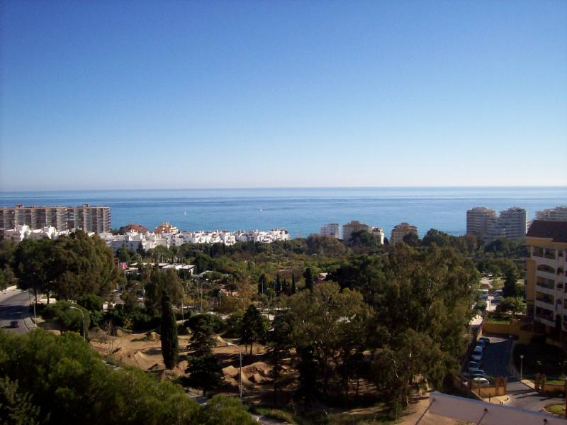 View from apartment overlooking Paloma park
