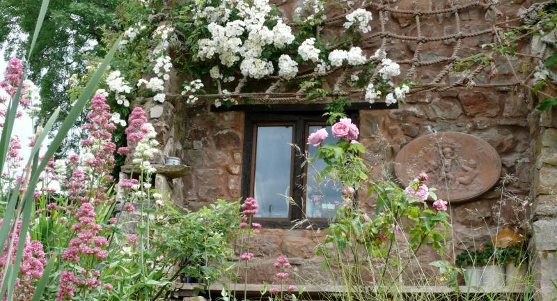 The owner is a rose enthusiast and the gardens are full of a range of different varieties.