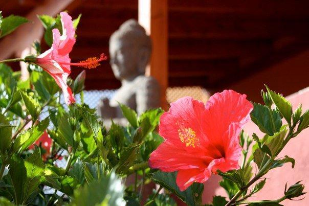 Thai statue in the flowery garden