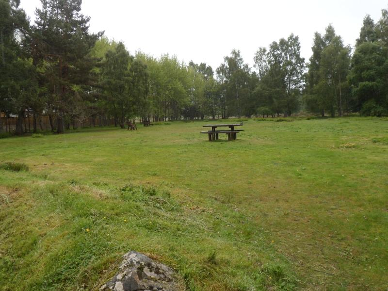 Picnic area to rear of house