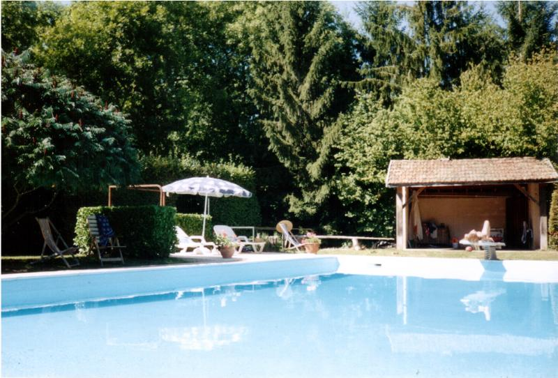 Magnificent 15 x 7m Pool bei Tabary
