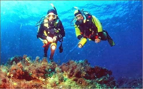 Scuba diving available on most beaches!