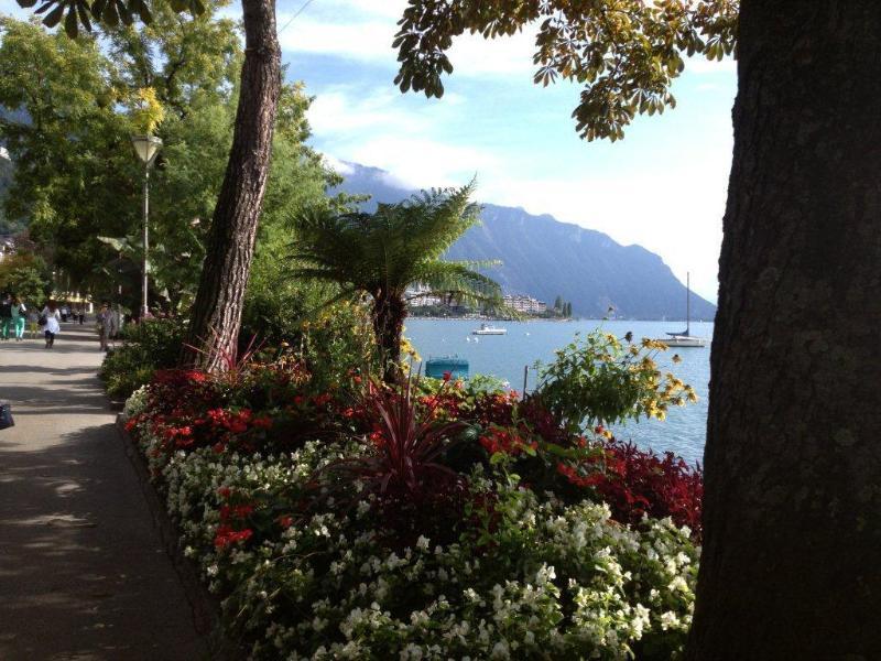 Lac Leman Montreux