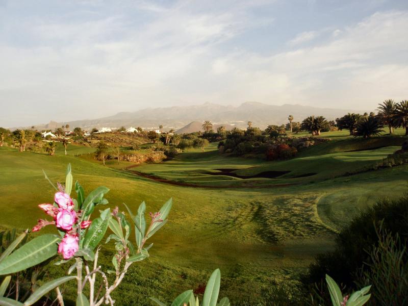 a view of golf del sur Course